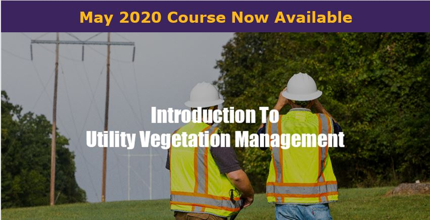 Intro to veg management